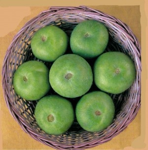 Tinda Hybrid - Green Ball - Product Image