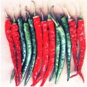 Hot Pepper-Mohini - Product Image