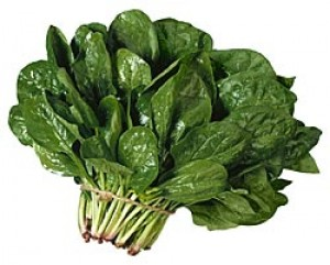 Spinach-Sagar - Product Image