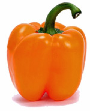 Bell Pepper Narangi - Product Image