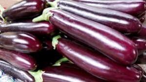 Eggplant Shiva  - Product Image