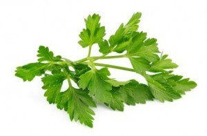 Flat Italian Parsley  - Product Image