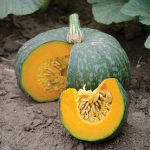 Pumpkin - Jade Prince - Product Image