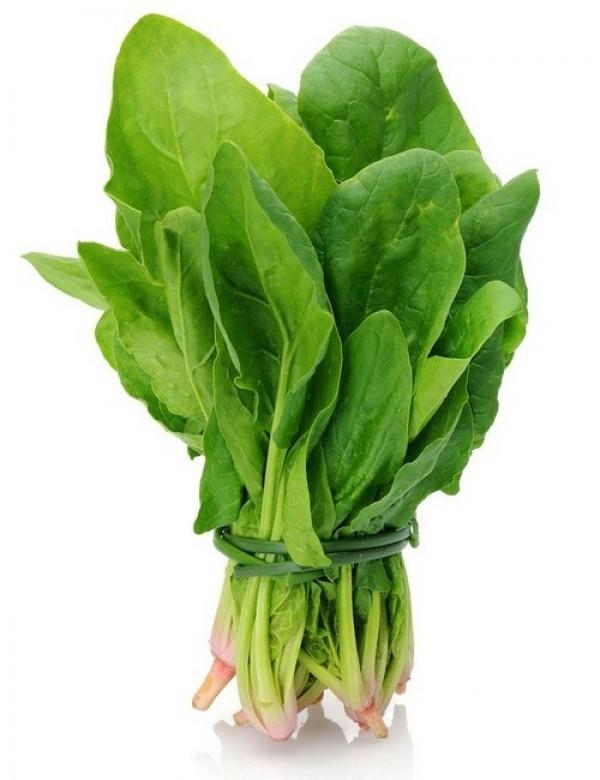 Spinach Sagar Seeds Of India Shop Seeds Of India