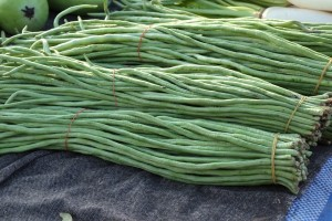 Yard Long Bean-Lata - Product Image