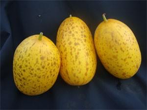Sambar Cucumber  - Product Image