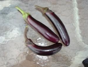 Eggplant- Shyamala  - Product Image