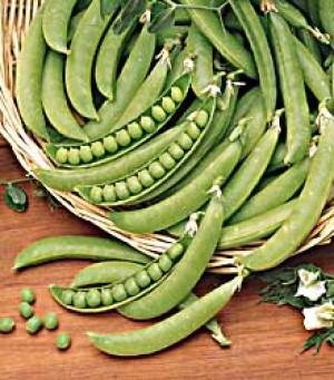 Green Pea-Wando - Product Image