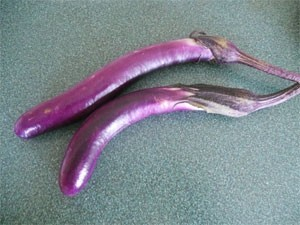 Eggplant - Ping Tung-OUT OF STOCK! - Product Image