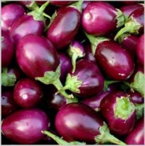 Eggplant - Badshah - NEW FOR 2021! - Product Image